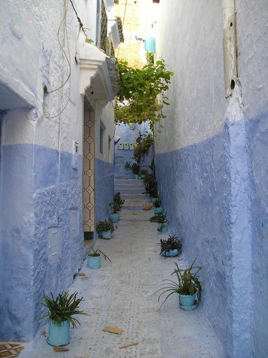 В голубом этот город всплыл, Чистота или утро в нем. 15186