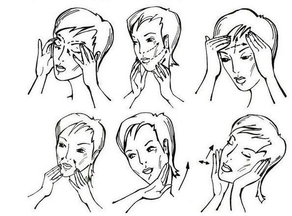 Как делать массаж лица и шеи в домашних условиях (594x440, 60Kb)