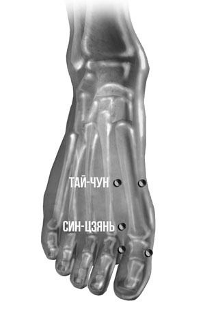 3925311_tochka_Taichyn (300x490, 15Kb)