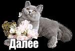 oie_mXLsbaPVDobz (150x102, 22Kb)