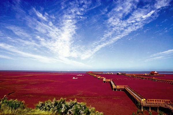 красный пляж китай фото 1 (600x400, 229Kb)