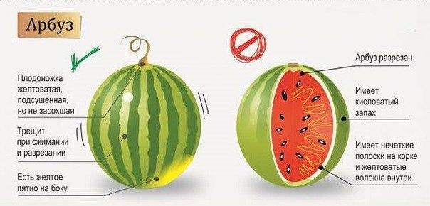 Правильно выбираем фрукты и ягоды3 (604x290, 133Kb)