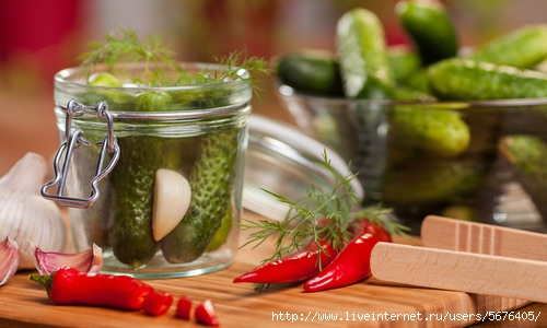 20100810-pickles-03 (500x300, 112Kb)