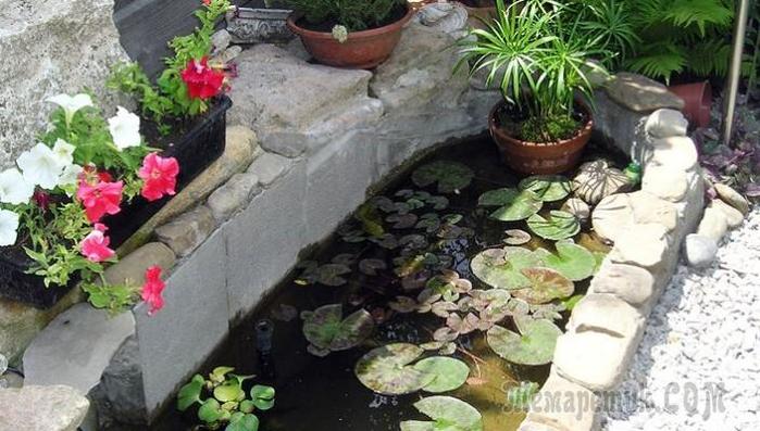 вода и водоемы на участке 124311505_fullsize