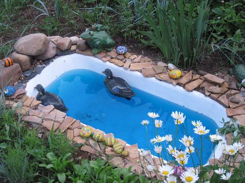 вода и водоемы на участке 124311515_fullsize10