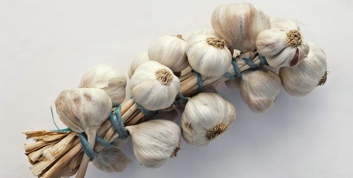 Allium_sativum._Restra_de_allos_de_Oroso-_Galiza (700x354, 126Kb)