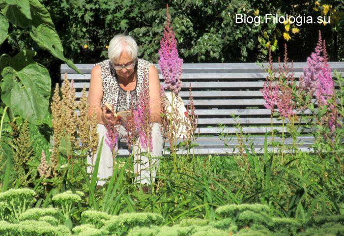 Пожилая читающая женщина на скамейке в парке (700x480, 99Kb)