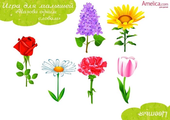 Didakticheskie_igry_dlya_detey_svoimi_rukami_igra_na_obobshchenie-11 (700x494, 147Kb)