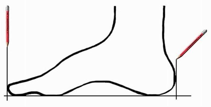 2835299_Izmenenie_razmera_OLPREDELENIE_RAZMERA_NOGI (700x356, 12Kb)