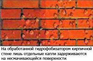 5689873_antigrib_propitka_02 (298x196, 81Kb)