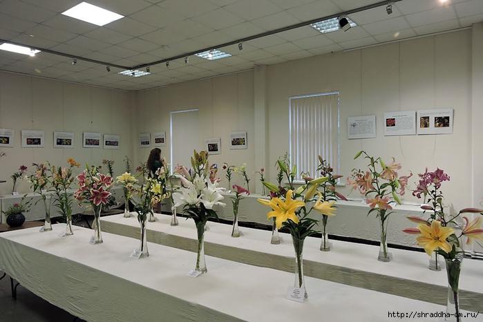 ботанический сад (63) (700x466, 227Kb)