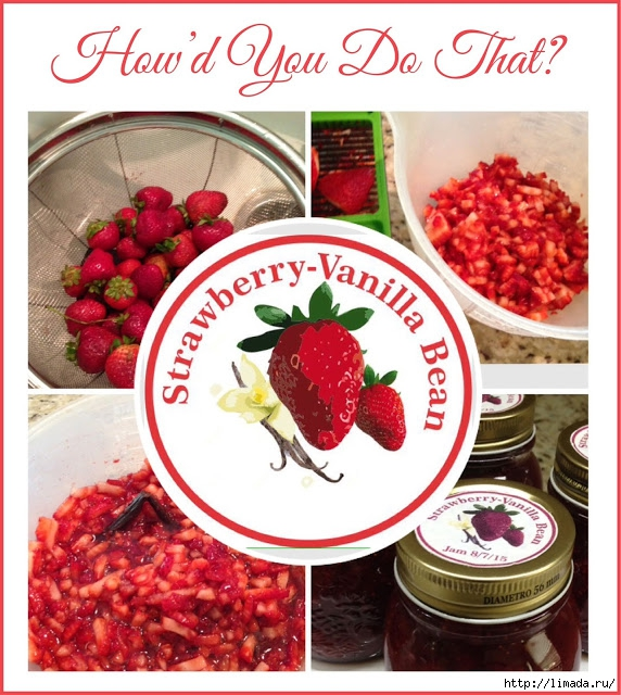 HYDT Strawberry-Vanilla Bean Jam (572x640, 290Kb)