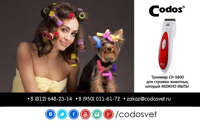 1302958_codos_cp5800 (700x431, 163Kb)