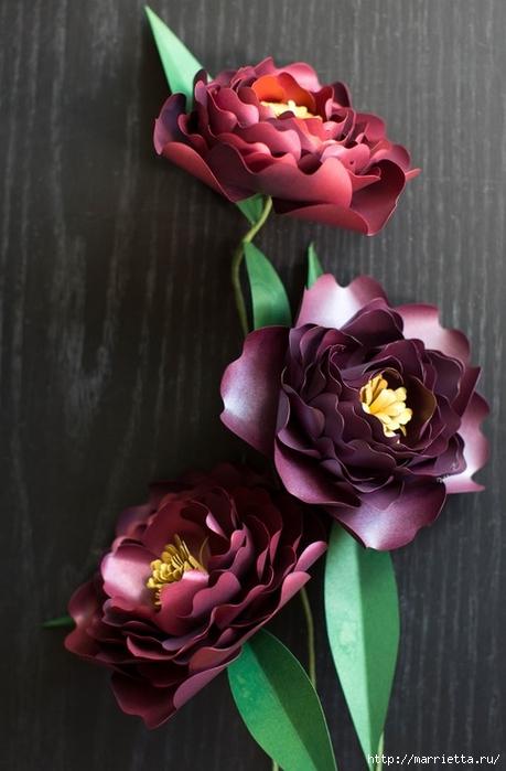 ПИОНЫ - цветы из декоративной металлизированной бумаги для скрапбукинга (2) (459x700, 196Kb)