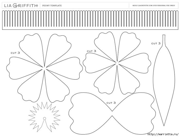 Шаблон цветов из гофрированной бумаги своими руками