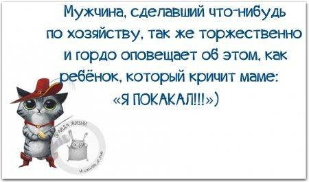 1439400951_hxlafuina5g (450x265, 103Kb)
