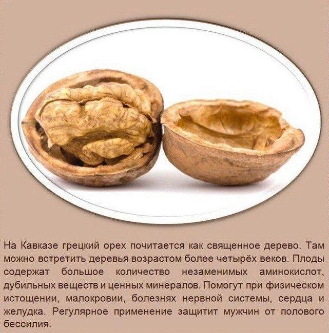 Польза орехов2 (641x650, 304Kb)