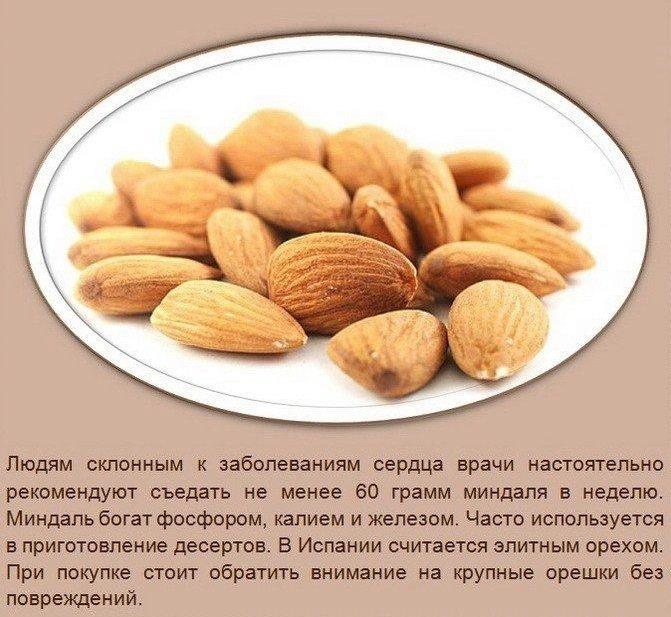 Польза орехов6 (671x617, 303Kb)