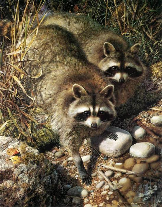 animal_artist_25 (549x700, 519Kb)