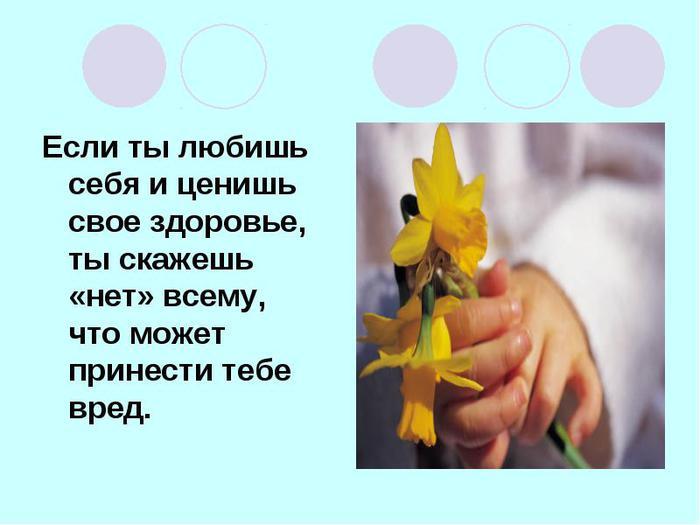1440066788_3 (700x525, 36Kb)