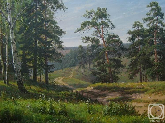 Дорога в лесу (700x521, 397Kb)