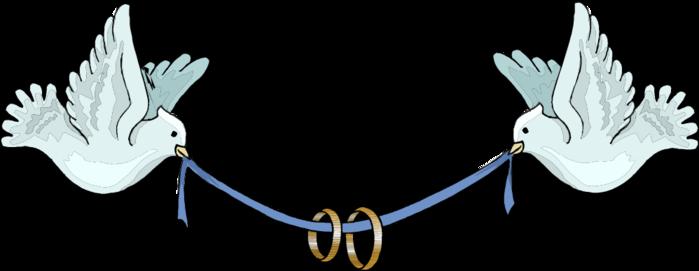 dove (500x171, 84Kb)