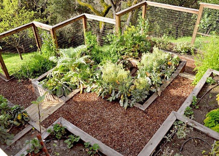 Как красиво обустроить огород своими руками