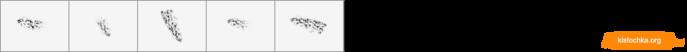 ID0575 (700x52, 8Kb)