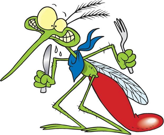 mosquito_narodnie_sposoby_1 (620x511, 158Kb)