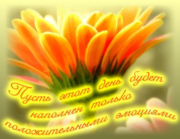 http://img1.liveinternet.ru/images/attach/c/6/89/241/89241687_1232482019_dd.jpg