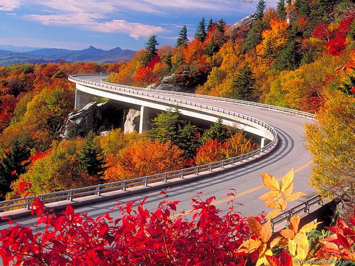 1318826839_the-best-top-autumn-desktop-wallpapers-33_resize (700x525, 224Kb)