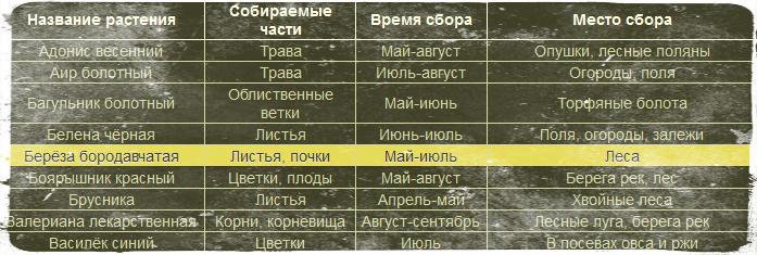 травник (697x235, 155Kb)