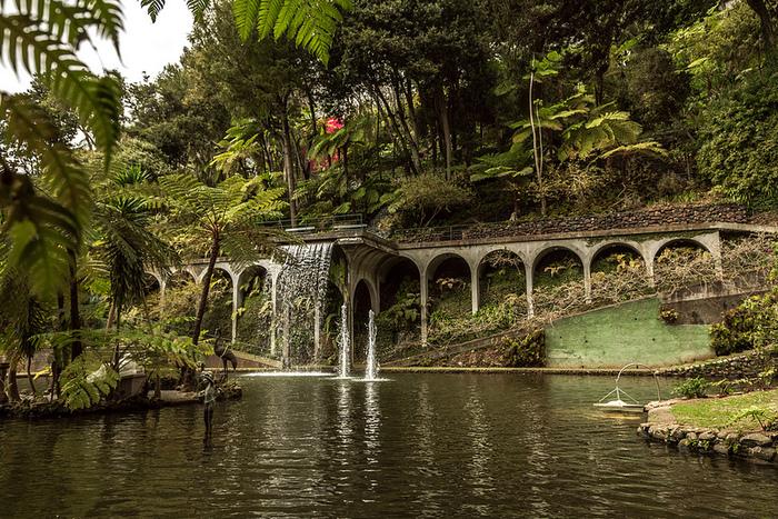 Jardim Tropical Monte Palace Мадейра 2 (700x467, 335Kb)