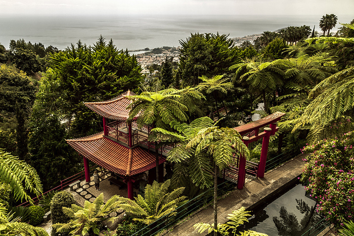 Jardim Tropical Monte Palace Мадейра 3 (700x467, 369Kb)