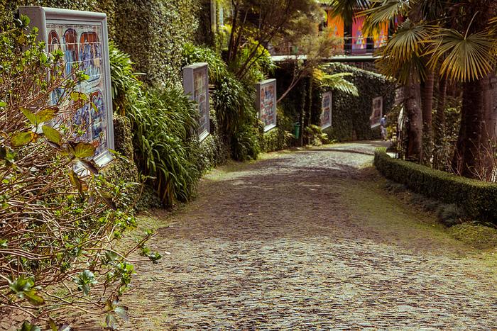 Jardim Tropical Monte Palace Мадейра 8 (700x467, 408Kb)