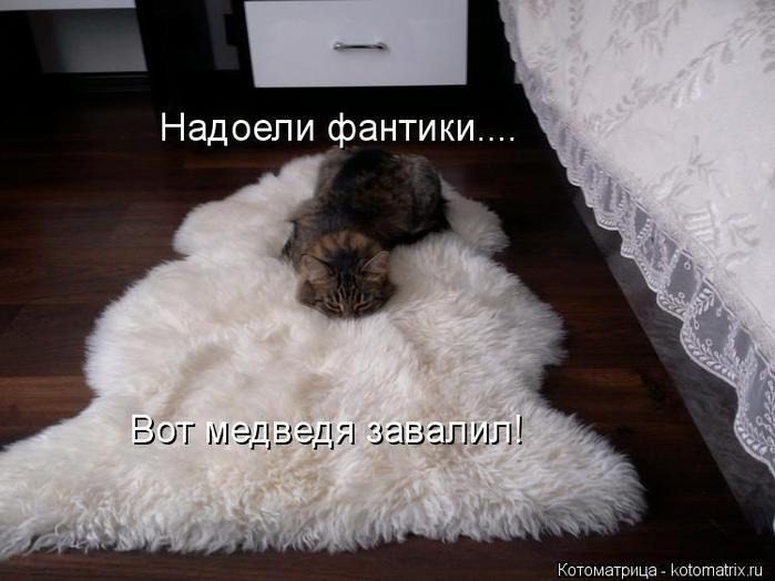 kotomatritsa_MF (700x524, 45Kb)