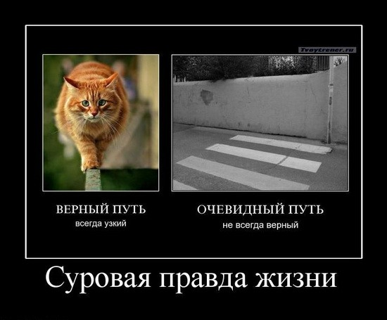 4524271_0_1914a_43a83836_XL (550x455, 43Kb)