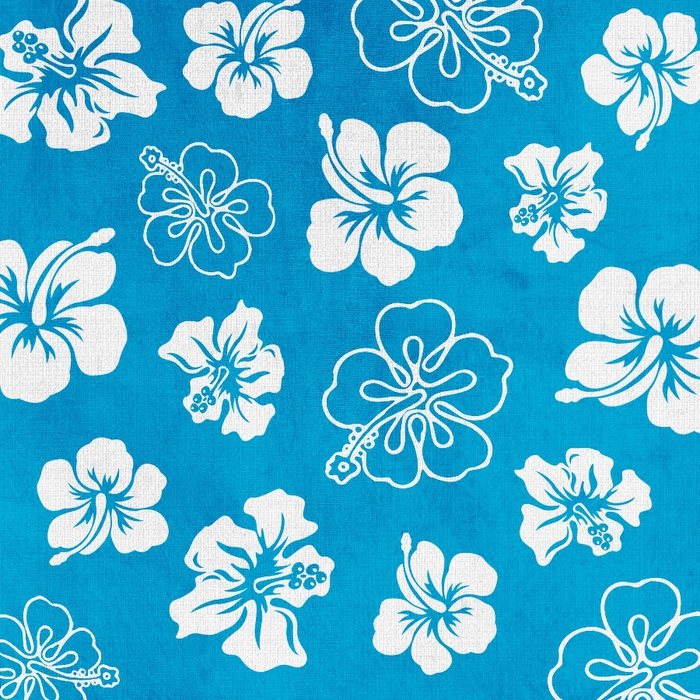 SummerDriggs_FlipFlopsicles_BlueFlowerPaper (700x700, 496Kb)