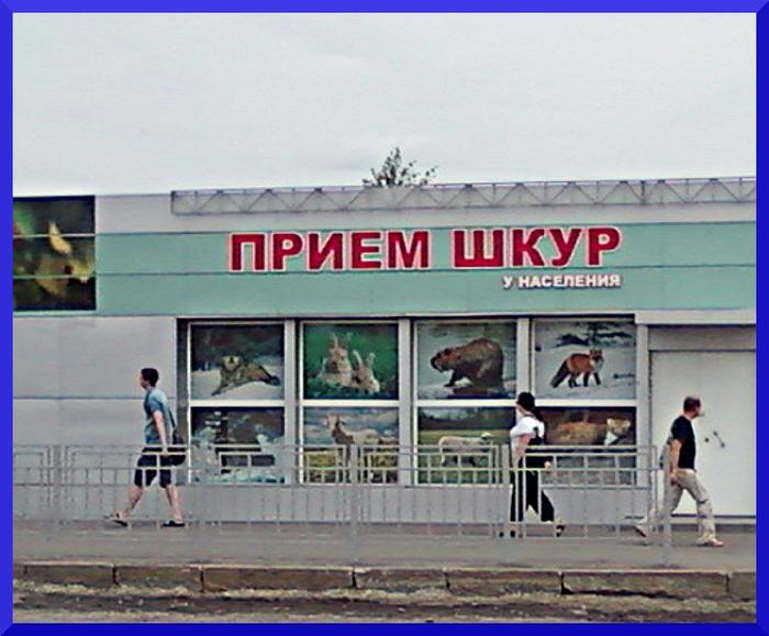 3821971_Foto0004 (700x579, 172Kb)