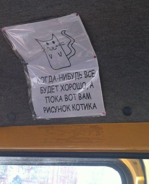 рисунок котика (490x604, 55Kb)
