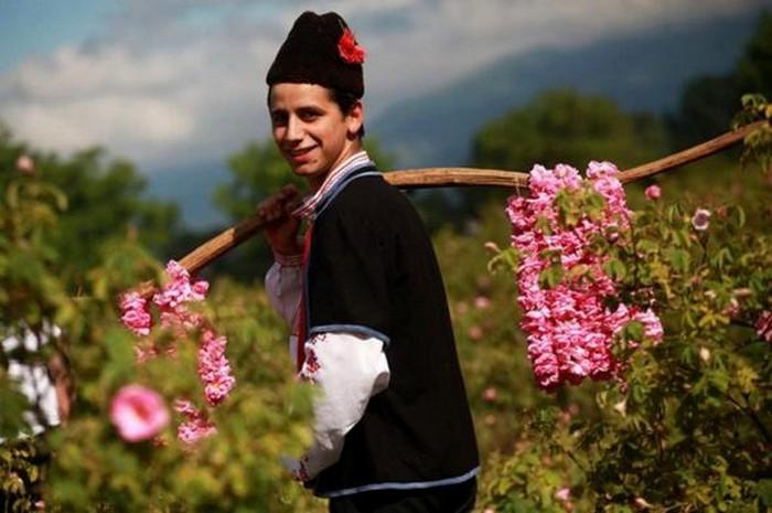 Долина Роз в Болгарии 5 (700x465, 74Kb)