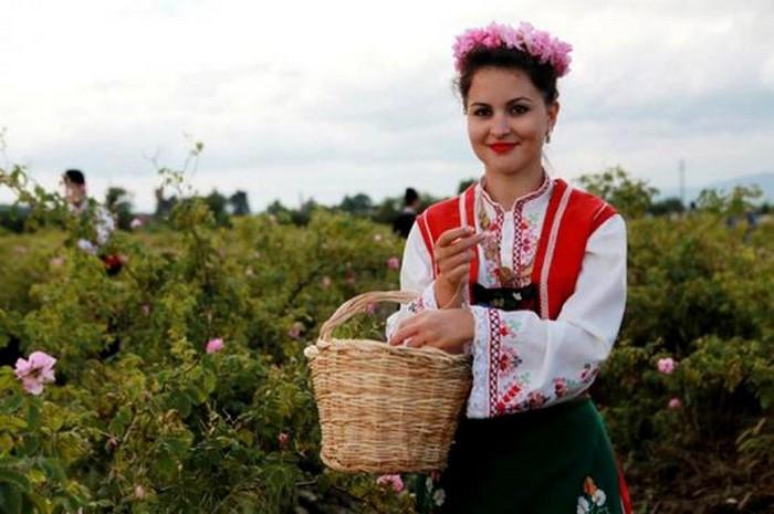 Долина Роз в Болгарии 13 (700x465, 73Kb)