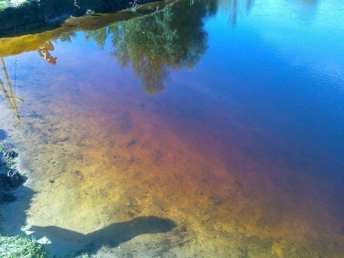 в усманке покраснела вода 4 (700x525, 56Kb)