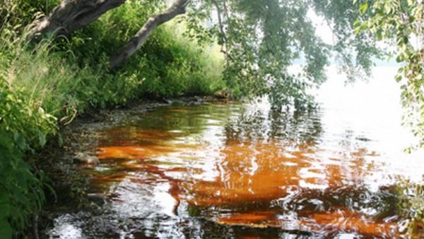 озеро балтым (600x339, 75Kb)
