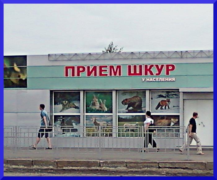 3821971_Foto0004 (700x579, 100Kb)