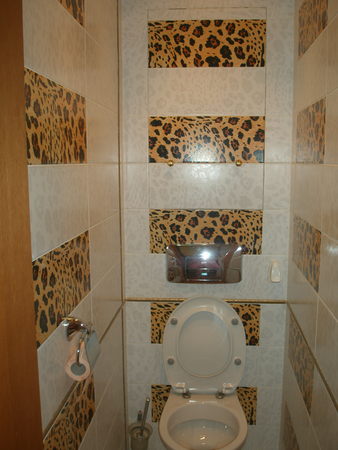 1342551893_tualet (338x450, 185Kb)