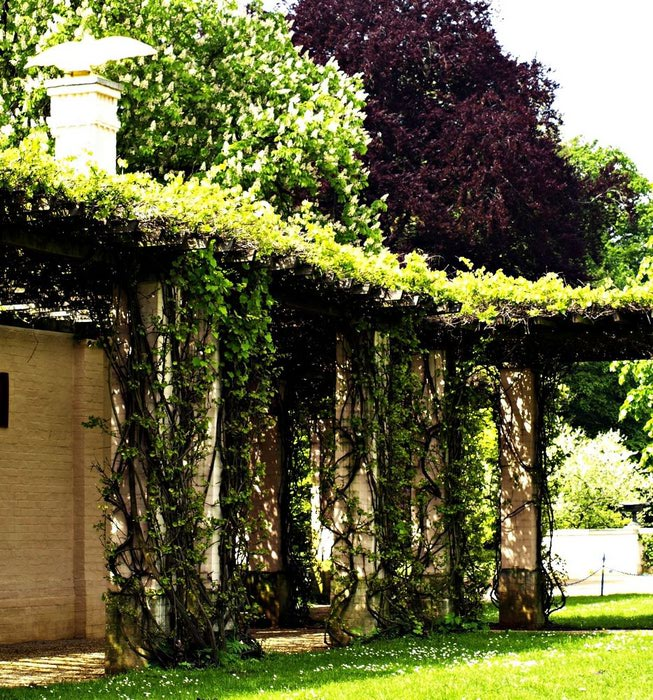 Парк и замок Браниц 65854