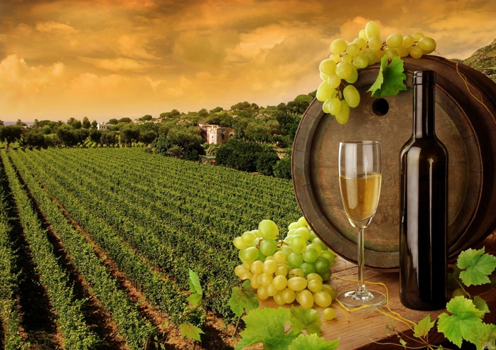 вино1 (698x493, 179Kb)