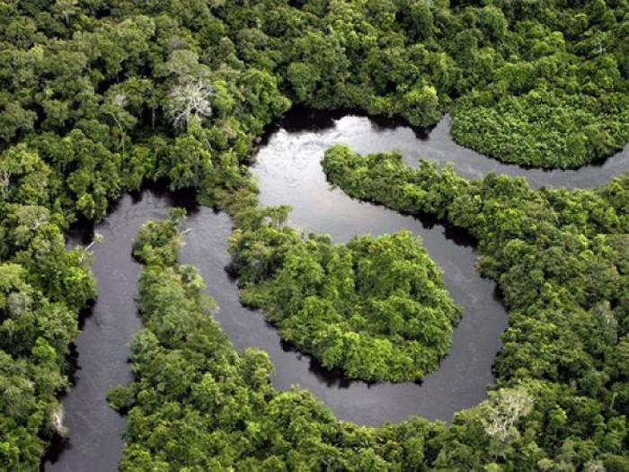 амазонка (700x525, 319Kb)