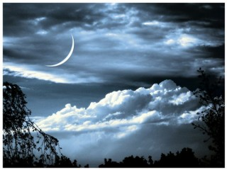 лунный (320x240, 23Kb)